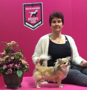 Cindy Best of Breed again!